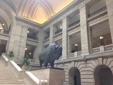 IMG_7667 bison assemblée