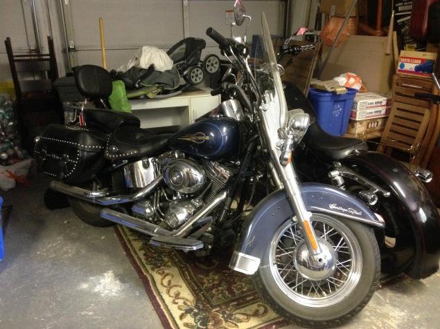 IMG_7962 Harley