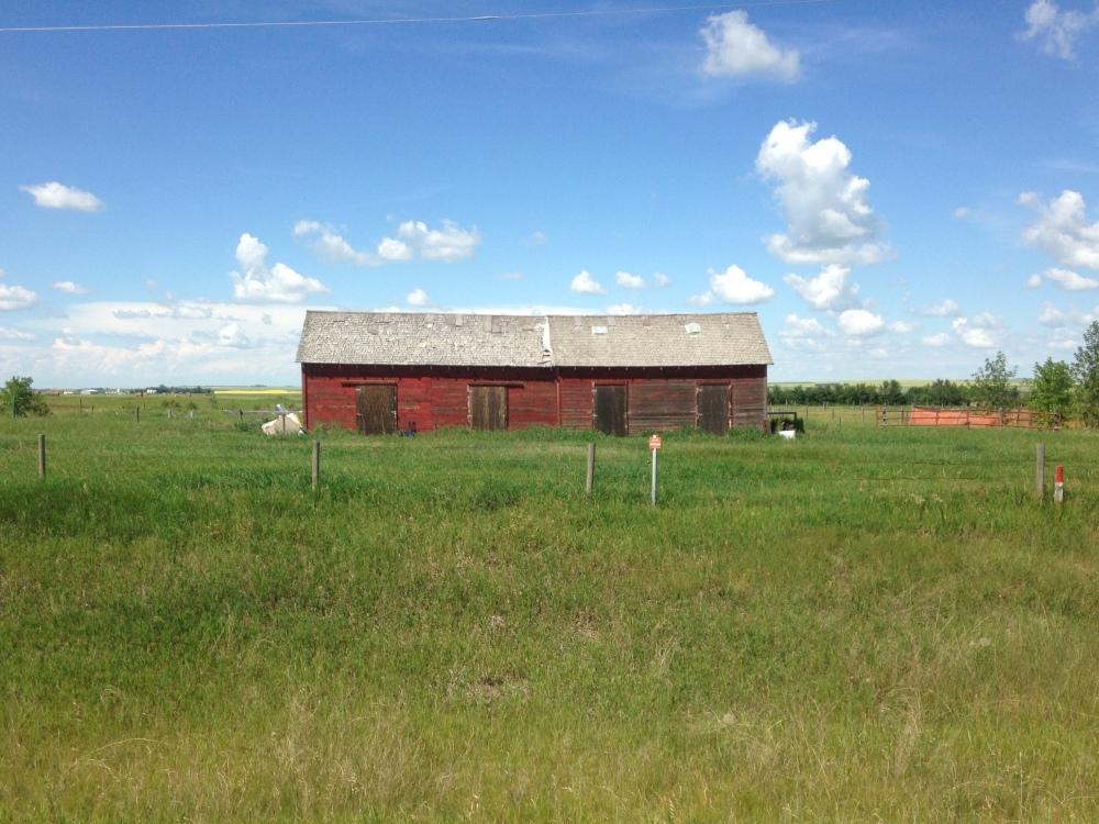 IMG_8204 ranch