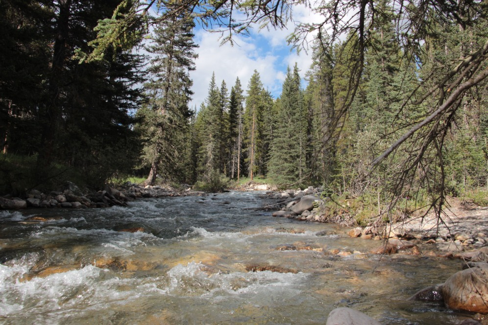 IMG_7410 rivière