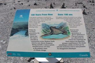IMG_7805 panneau glacier-15
