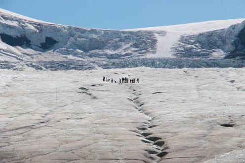 IMG_7821 glacier-17