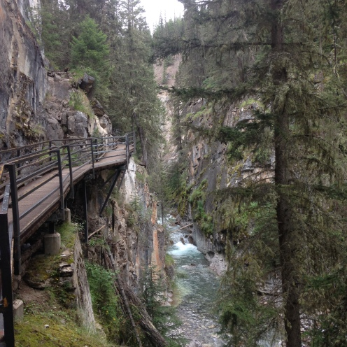 IMG_8541 canyon