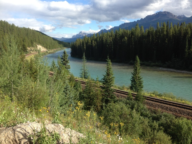 IMG_8599 paysage train