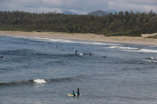 IMG_8480 SURFEURS